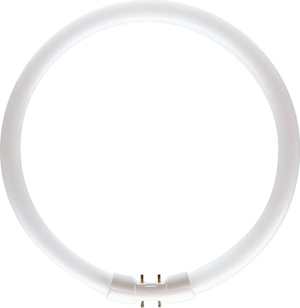 Philips Leuchtstofflampe MASTER TL5 CIRCULAR 55W/830 / EEK: A